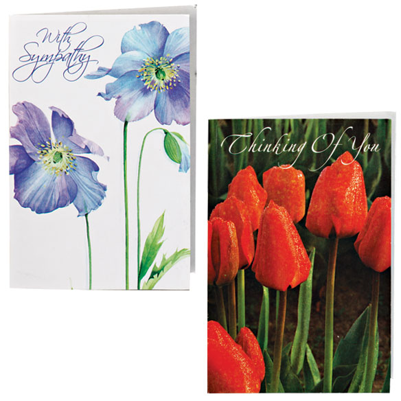 Encouragement And Sympathy Cards - Set Of 24 - View 4