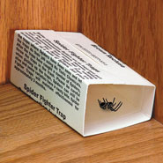 Outdoor - Spider Traps - Set of 4