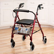 Walking Aids - Lumex Walkabout Lite 4 Wheel Rollator