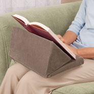 Hobbies & Books - Wedge Book Pillow
