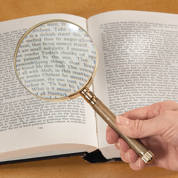 4-in-1 Magnifier