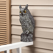 Clearance - Flush mount Scare Owl by Pest be Gone™
