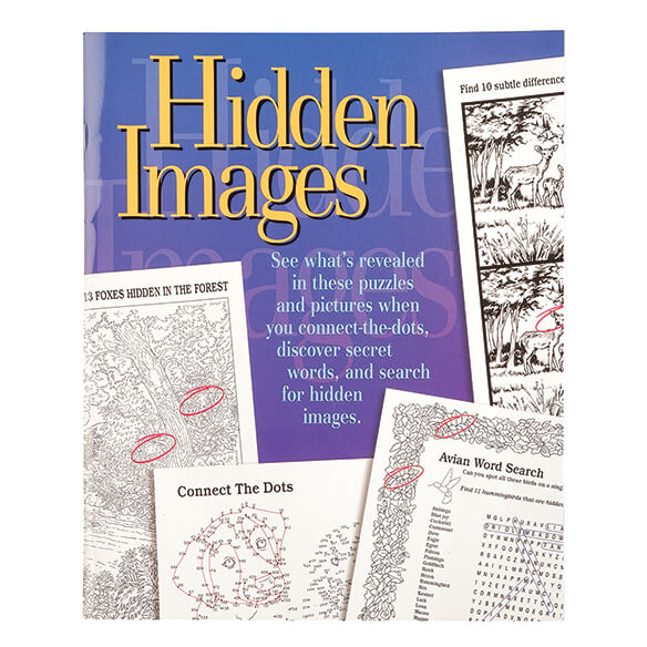 Hidden Images Puzzle Book - View 1