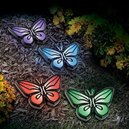 Outdoor - Inground Solar Butterfly Lights Set of 4